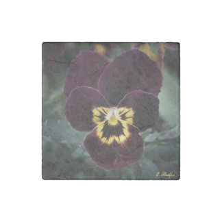 Purple and Yellow Miniature Pansy Stone Magnet