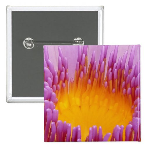 Purple and Yellow Water Lily Abstract Art Buttons