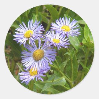 Purple Aster Classic Round Sticker
