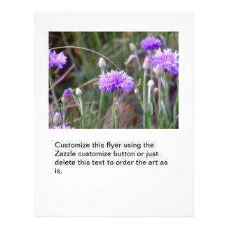 Purple bachelor buttons fun colourful garden 21.5 cm x 28 cm flyer