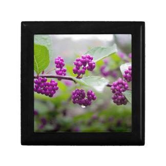 Purple Berries Gift Box