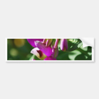 Purple Blooms Bumper Sticker