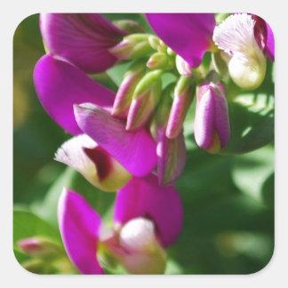 Purple Blooms Square Sticker
