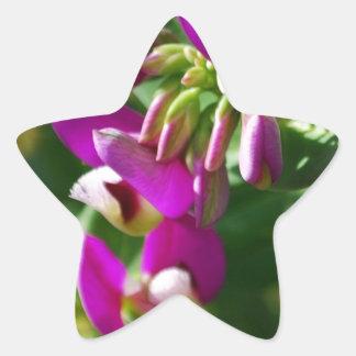 Purple Blooms Star Sticker