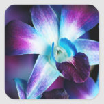 Purple & Blue Dendrobium Orchid Customised Orchids Square Stickers