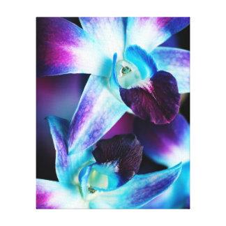 Purple & Blue Dendrobium Orchid Customized Orchids Canvas Print