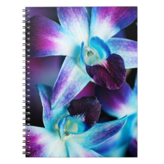 Purple & Blue Dendrobium Orchid Customized Orchids Notebooks