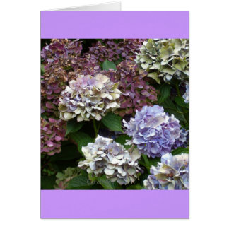 Purple Blue Hydrangeas Stationery Note Card