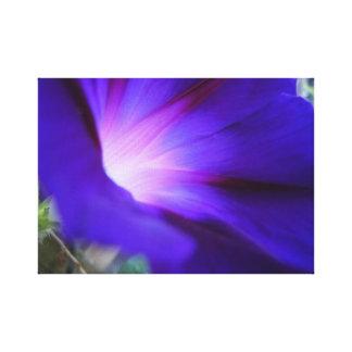 Purple & Blue Morning Glory Print