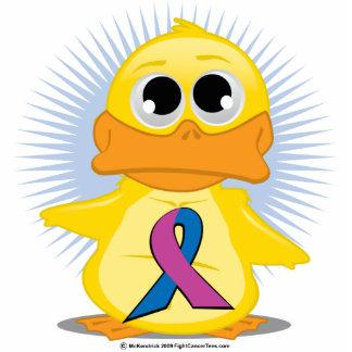 Purple & Blue Ribbon Duck Photo Sculptures