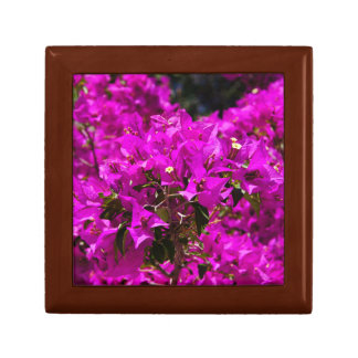 Purple Bougainvillea flowers Gift Box