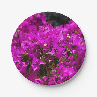 Purple Bougainvillea flowers Paper Plate
