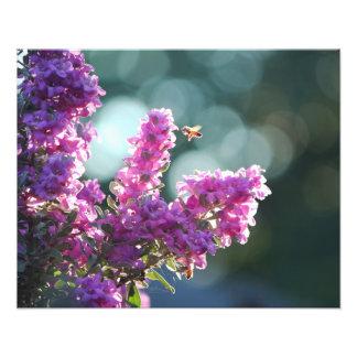 Purple Buffet Photo Art