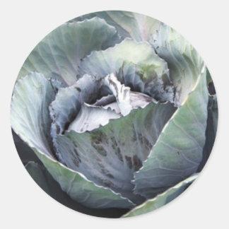 purple cabbage classic round sticker