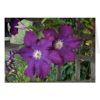 Purple clematis- Blank Greetings Card