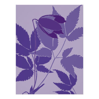 purple clematis posters