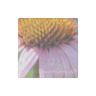Purple Cone Flower Magnet