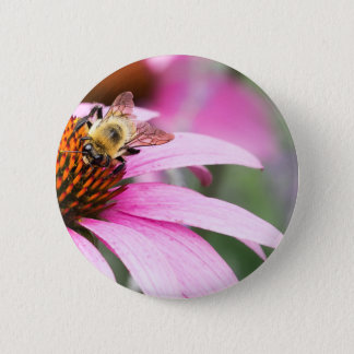Purple Cone Flower with Bee 6 Cm Round Badge