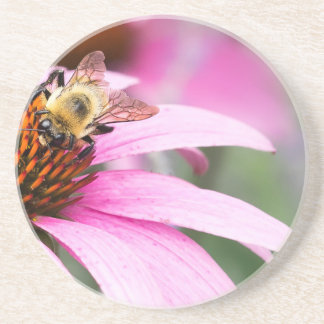 Purple Cone Flower with Bee Coaster