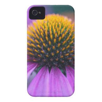 Purple coneflower (Echinacea purpurea) Case-Mate iPhone 4 Cases