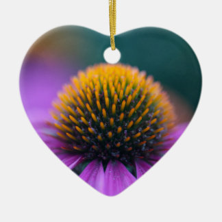Purple coneflower (Echinacea purpurea) Ceramic Ornament