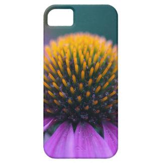 Purple coneflower (Echinacea purpurea) iPhone 5 Case