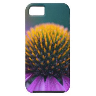Purple coneflower (Echinacea purpurea) iPhone 5 Covers