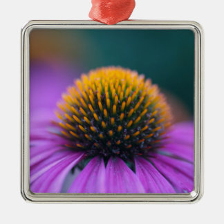 Purple coneflower (Echinacea purpurea) Metal Ornament