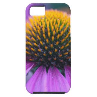 Purple coneflower (Echinacea purpurea) Tough iPhone 5 Case