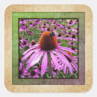 Purple Coneflower Echinacea Wildflower Sticker