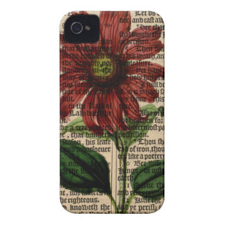 Purple Coneflower Flower iPhone 4 Cases