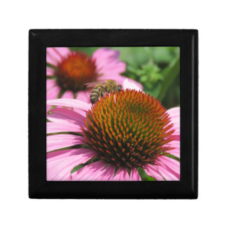 Purple Coneflower with Bee Small Square Gift Box