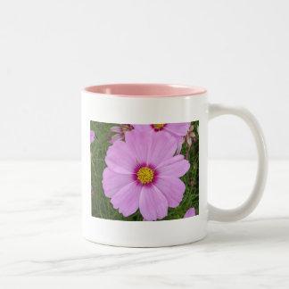 purple cosmos mug