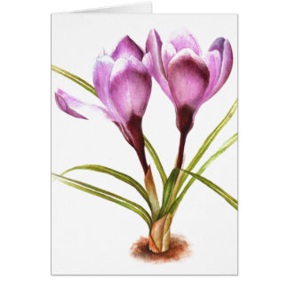 """Purple Crocus"" fine art everyday blank card Greeting Card"