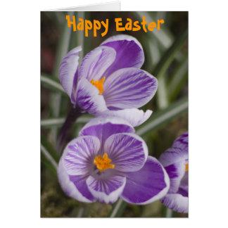 Purple crocus flowers ...  Easter card