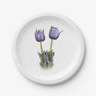 Purple Crocus Flowers Paper Plate