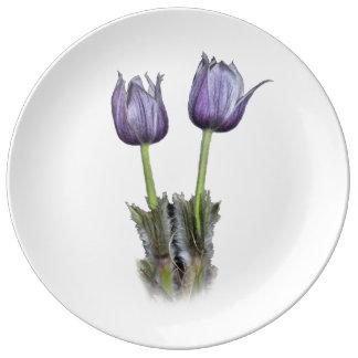 Purple Crocus Flowers Plate