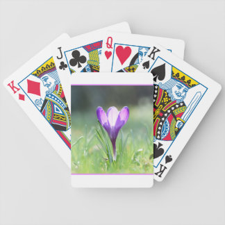 Purple Crocus in spring 03.3 Bicycle Playing Cards