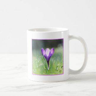 Purple Crocus in spring 03.3 Coffee Mug
