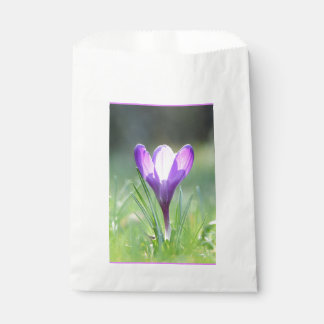 Purple Crocus in spring 03.3 Favour Bag