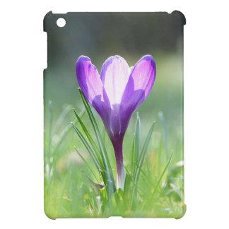 Purple Crocus in spring 03.3 iPad Mini Cover