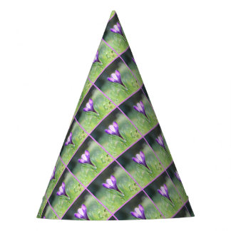 Purple Crocus in spring 03.3 Party Hat