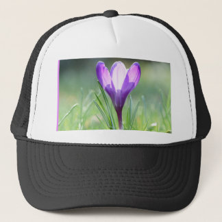 Purple Crocus in spring 03.3 Trucker Hat
