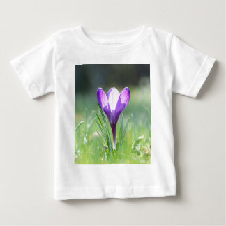 Purple Crocus in spring Baby T-Shirt