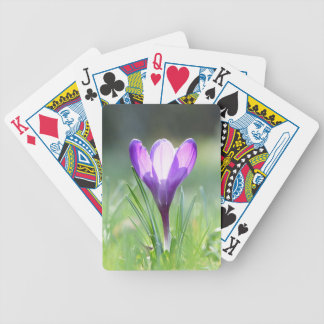 Purple Crocus in spring Bicycle Playing Cards
