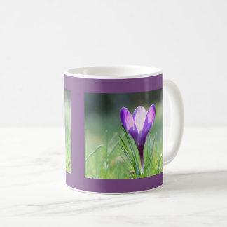Purple Crocus in spring Coffee Mug