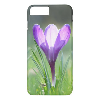 Purple Crocus in spring iPhone 8 Plus/7 Plus Case