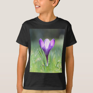Purple Crocus in spring T-Shirt