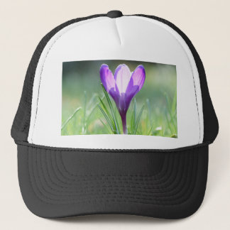 Purple Crocus in spring Trucker Hat