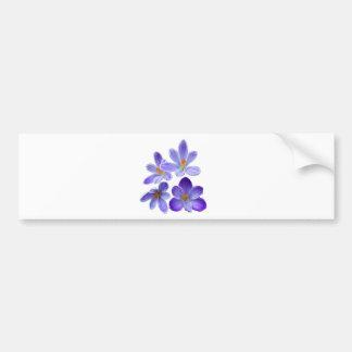 Purple crocuses 02 bumper sticker